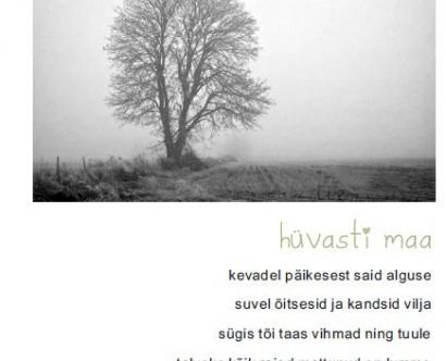 KO10_pilt2